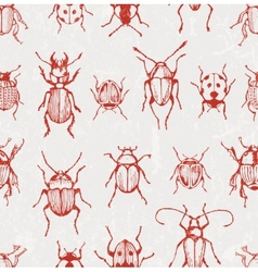 Seamless pattern with beetles vector image