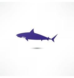 Shark icon vector