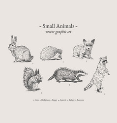 Small animals vintage set vector
