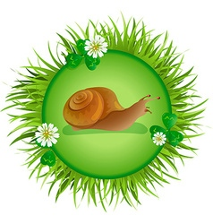 snail crawling on the meadow vector image