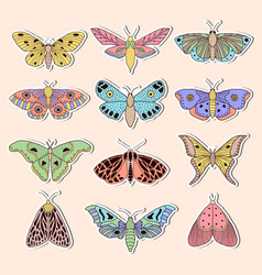 stickers with butterflies vector image