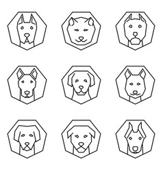 Straight line icon set dog face vector