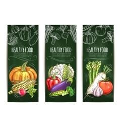 Vegetable chalk sketch banner on blackboard vector image