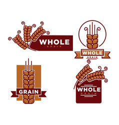 whole grain product emblem vector image
