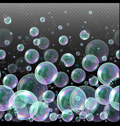 3d soap transparent bubbles water spheres vector