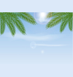 background with tropical blue sky with palm tree vector image