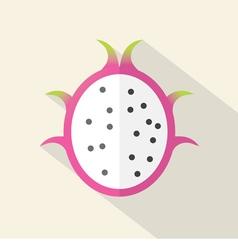 Dragon Fruit Part Flat Design vector