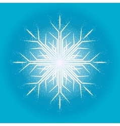 Elegant snowflake on a blue background surrounded vector