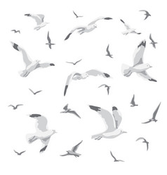 Flying seagulls isolated vector
