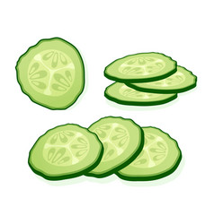 Fresh cucumber sliced slices isolated on white vector