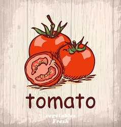 Fresh vegetables sketch background Vintage hand vector