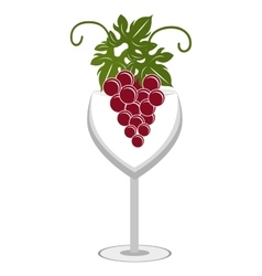 Glass of wine with bunch of grapes graphic vector