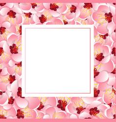 Momo peach flower blossom banner card vector