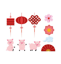 set chinese lamps with flowers and fan with pigs vector image