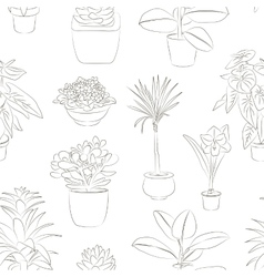 Houseplants set pattern vector image