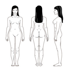naked standing woman vector image vector image