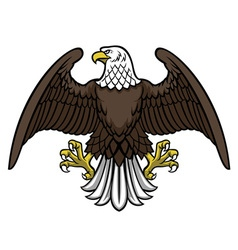 Bald eagle spread wing vector