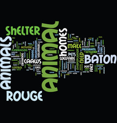 baton rouge business report text background word vector image