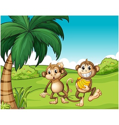 Happy monkeys at the hill with bananas vector