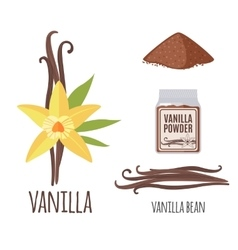 Superfood vanilla set in flat style vector image