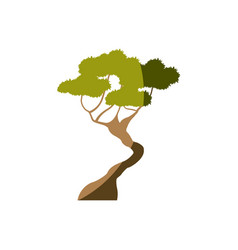 Tree forest season nature branch vector