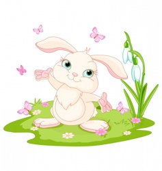 Easter bunny and butterflies vector image