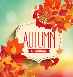 Autumn is coming background vector image vector image