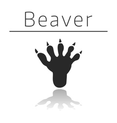 Beaver animal track vector image vector image