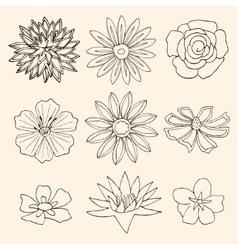 Set of Flower vector image