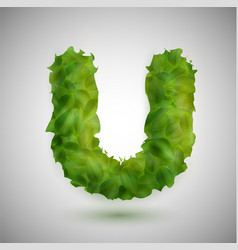 a letter made by leaves vector image