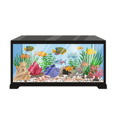 Aquarium tank cartoon vector