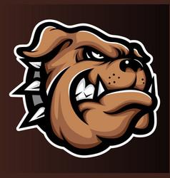 bulldog annimal head logo icon vector image