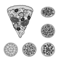 Different pizza monochrome icons in set collection vector