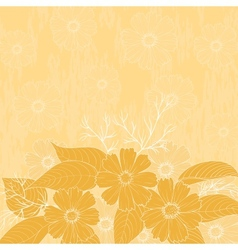 Flowers cosmos background vector