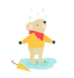 funny cute koala staying under rain vector image