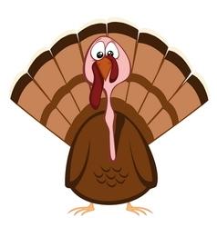 Funny turkeys vector