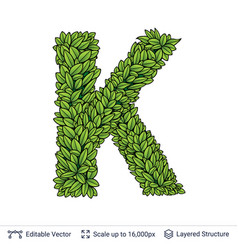 Letter k symbol of green leaves vector