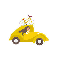 Travelling car with bicycle girl driving vector