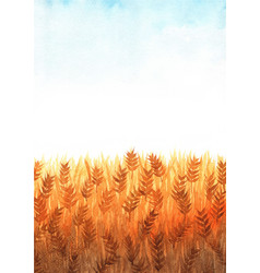 Wheat field watercolor with clear sky watercolor vector