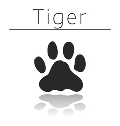 Tiger animal track vector image