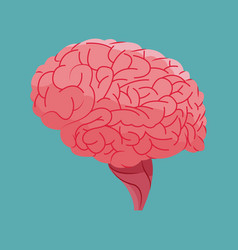Human brain organ health vector