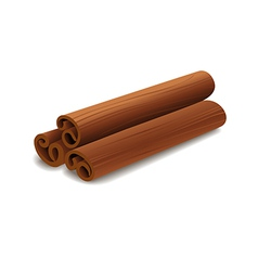 cinnamon sticks vector image