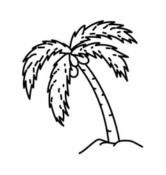 coconut tree icon doodle hand drawn or outline vector image