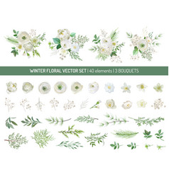 elegant evergreen pine branches pale rose white vector image