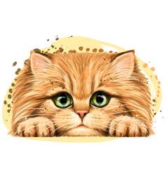 Fluffy kitten wall sticker vector