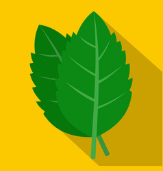 Fresh green basil leaves icon flat style vector