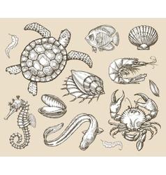 Hand drawn sketch set of seafood sea animals vector image