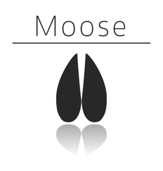 Moose animal track vector