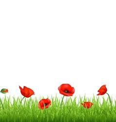 Poppy Field vector
