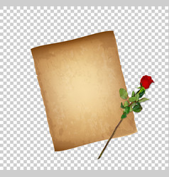 retro of worn parchment and red rose vector image